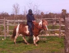 A cheval dans le carré