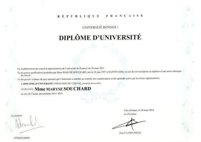 Diplôme DU MS